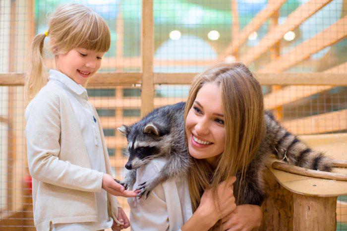 Честерский зоопарк – место, где животные живут как дома